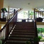Photo of Hotel Merengue