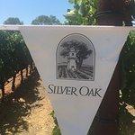 Photo de Silver Oak Cellars