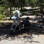 Foto de Jenny Lake Campground