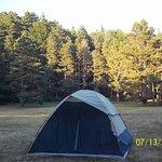 Meadow Campsite #69