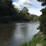 Warrandyte River Reserve