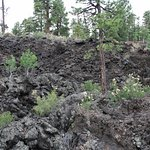 Sunset Crater Volcano lava flow