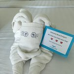 welcome note with cute elephant towel