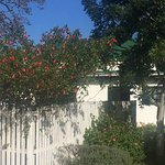 Kingston Farm - best food in South Africa! And such a lovely plan to stay - this is utterly bril