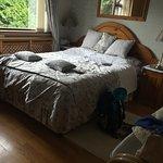 Zdjęcie 613615