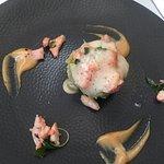 Mousse avocats - crevettes - agrumes