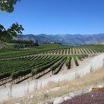 Foto de Benson Vineyards Estate Winery