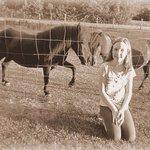 Miniature horses on the farm...love, love, love!
