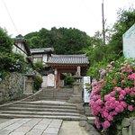 Yatadera Temple Foto