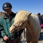 Foto di Islenski Hesturinn, The Icelandic Horse - Riding Tours