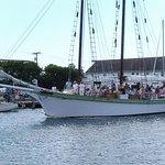 Argia Cruises Foto