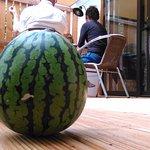 Dit is de veranda van de Chalet Indigo. Vanuit watermeloen perspectief.