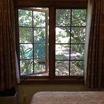 this was from one of the smaller rooms...beautiful Oaks outside windows! So peaceful