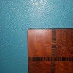 Roach on headboard