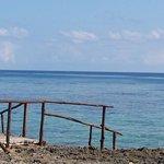 Foto de Coral Beach