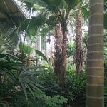 Inside the arboretum.