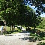 Foto di Agriturismo Le Ceregne