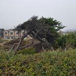 Photo de Sand Pebbles Inn