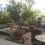 Hotel Ibis Granada Foto