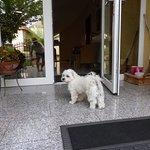 Photo of Anett Villa