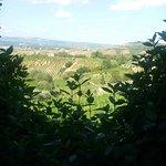 Photo of Agriturismo Cameli