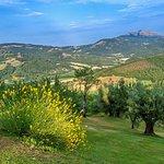 Vista incantevole dal Borgo- Enchanting view from the Borgo