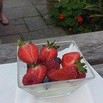 Lemon & Elderflower Jelly, Fresh Strawberries & Cream