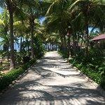 Photo de Diamond Bay Resort & Spa