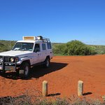 Shark Bay Coastal Tours Foto