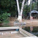 Foto de Camping Tio Gato