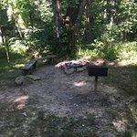 Foto de Comfort in the Woods Cabins