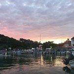 Photo de White Shark Sport Fishing & Tours