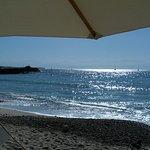 Photo of Tuna Blanca