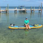 Hanging out right in front of the beach area on a paddle board.