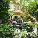 Le jardin de l'hôtel Eldorado