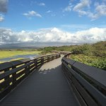 wonderful bird watching walking trail; short drive from OBH