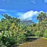 Foto de Hotel Mountain Paradise