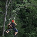 Zip lining on Ace property
