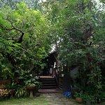 Photo of Chompor Lanna