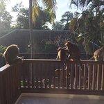 Photo de Champlung Sari Hotel