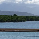 Port Douglas Surf Life Saving Club Foto