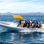 One of the rib boats that are used for fast sea transfers and one day excursions.