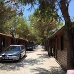Photo of Camping Pineta