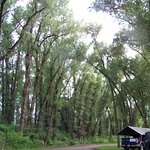 Photo de Tall Texan RV Park & Cabins