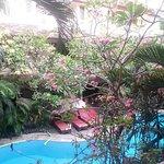 秘密花園客棧張圖片