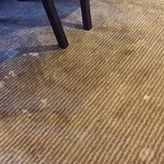 Dirty Carpet Ousing With Bacteria