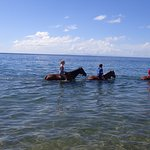 Riding horseback in the water with Guadalupe Island in the distance