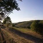 Photo de Agriturismo Marruchetone Vecchio