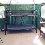 habitat shelter