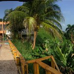Photo de La Paloma Guest House